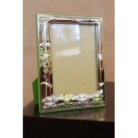 MIDA/20 frame 160609