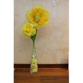 Ferza vaso PAD013